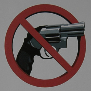 federal firearms prohibitions prevent many people from owning guns